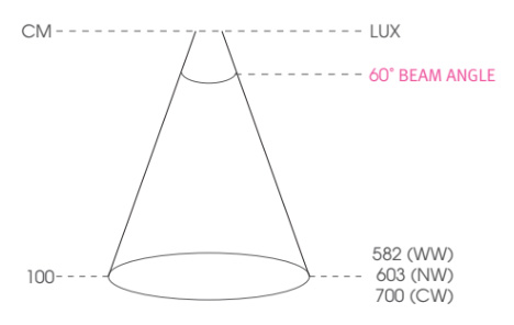 olbia-lux2